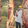 Isaac Allen, CSU Wagga judging beef carcases at the 2012 ICMJ contest