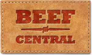 beef-central-leather-patch-web