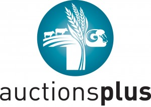 auctions-plus-logo-rgb