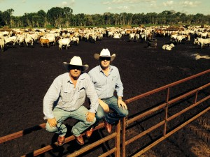Frontier International's Mike Garland and Tony Gooden with a consignment of export cattle in Darwin.