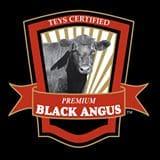 Teys Angus
