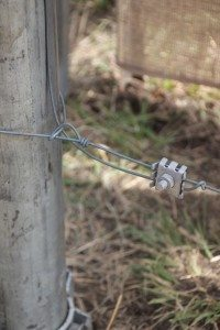 Electric fencing tips 5