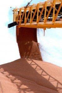 Bulk grains handling sorghum