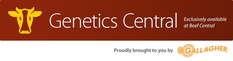 Genetics Central - exclusive to Beef Central