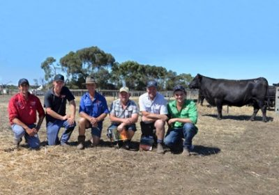 The top priced female at the Coolana dispersal Coolana Tearful G216 with vendors Ben, Mark and Max Gubbins, purchaser Damien Gommers, agent Rodney Dix and Coolana stud manager Martin Beltrame.