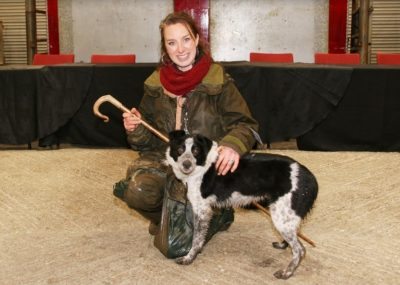 World Record Price For Uk Working Dog Beef Central